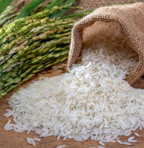 Going-against-the-grain-Declining-political-and-price-interference-provides-rice-sourcing-boost-to-Asia-food-firms